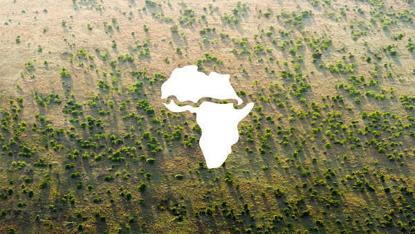 great green wall illustration